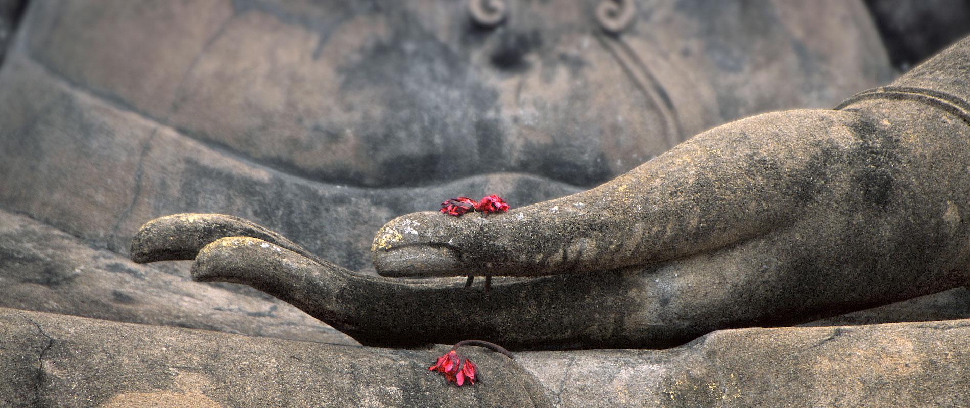 Als Synonym für Yoga; Buddha Hand (Stein) und Blüten